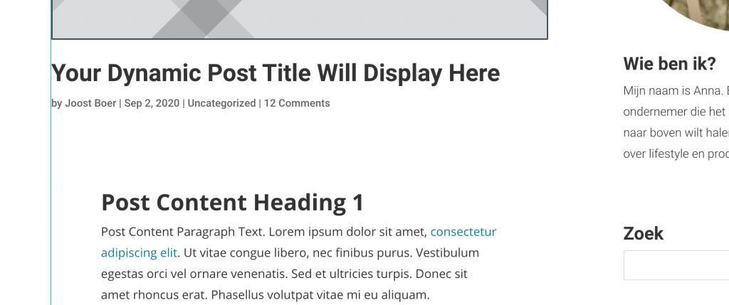 Divi blog voorbeeld.