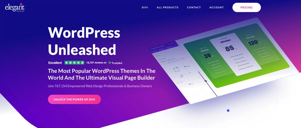Divi is een bekend WordPress thema